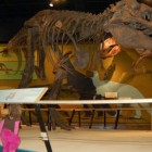 Cleveland Museum of Natural History in Cleveland, OH