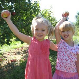 Kids Picking Apples